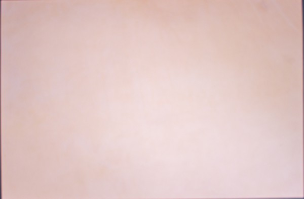 Blankleder Stück Farbe natur XXL