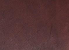 Lederfarbe Dunkelbraun