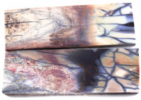 Raffir® Mammut Ivory Griffschalenpaar hellmeliert