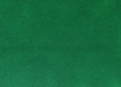 Lederfarbe Grün